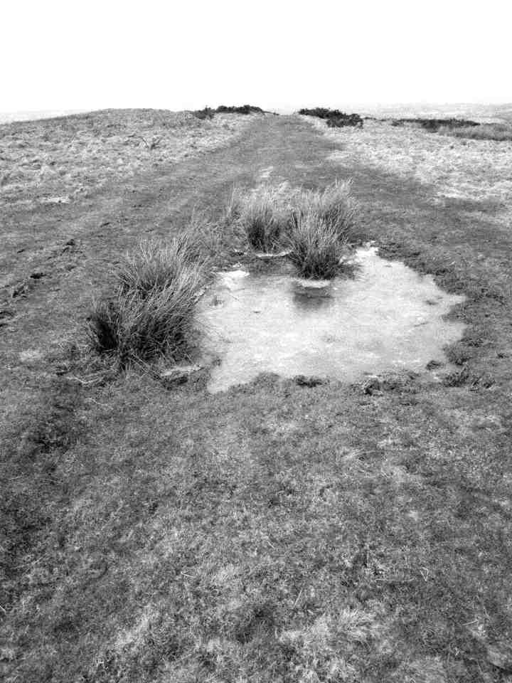Moorland path