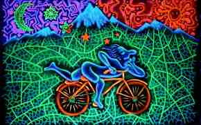 Bicycle day by Anastasia