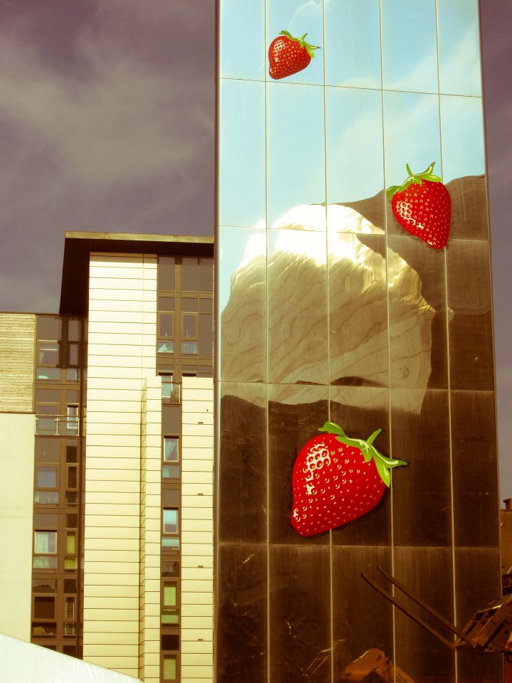 Strawberry catch (1 of 1)-2