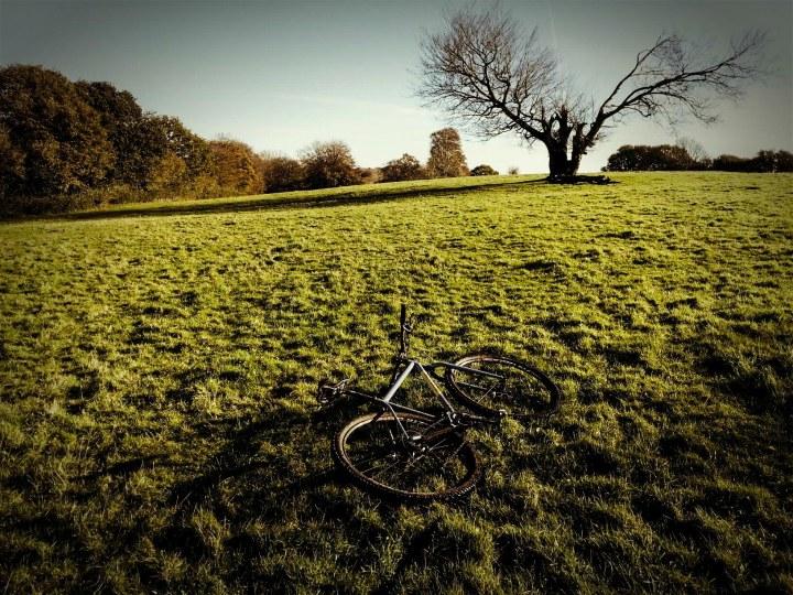 field and bike (1 of 1)