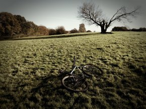 Field and bike