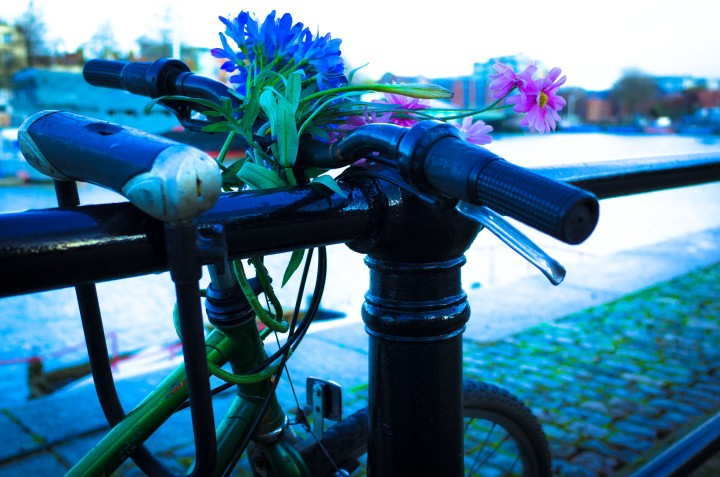 The bike (1 of 1)