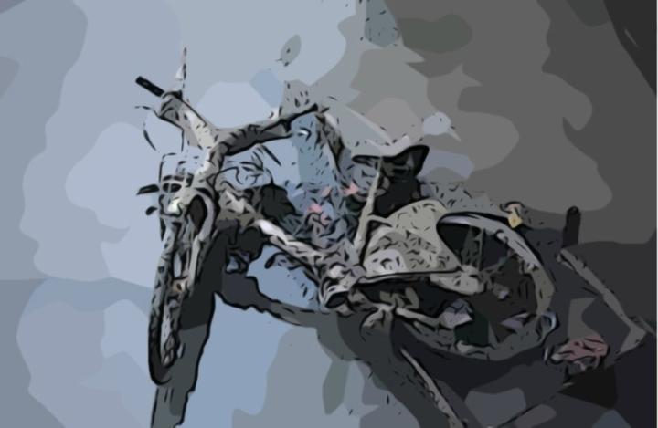 bikeincanal art